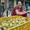 Morning market Hoi An ancient town tour